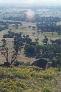 The view from Lynne's property near Beechworth.