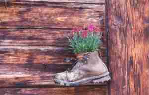 A Hiking Boot Mounted on the Wall of a Gimmelwald Chalet